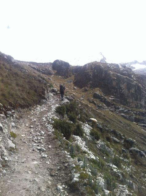 Senda de ascenso hacia la pampa del campo base del Pisco.