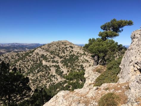 Ruta subida a La Atalaya-Albacete...f34