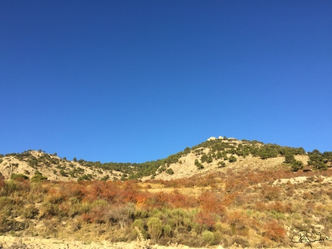 Ruta subida a La Atalaya-Albacete...f74