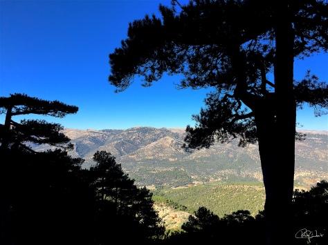 Subida a La Sagra-Granada 8-11-15...f22