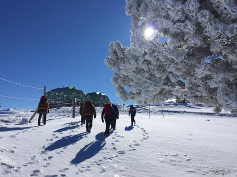 Foto del grupo en dirección al observatorio.